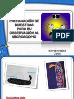 4 Preparación de muestras para su observación microsc.pdf