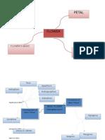 Concept Map Kl Mortum