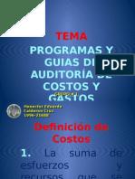 SIP-Programas y guías de auditoría de costos y gastos.pptx