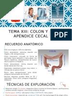 Aparato Digestivo El Colon, Imagenologia. Dr. Nicolas