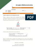 ArreglosBidimensionalesPEE.pdf