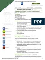 Ejemplo Currículum, Cv, Currículum Formato, Currículum Vitae Modelos, Currículum Como Hacer