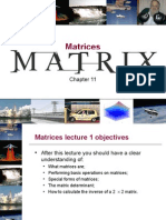 Chapter 11- Matrices