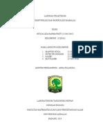 LAPORAN PRAKTIKUM MAMALIA