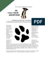 Guía para una feliz adopción