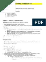 Anatomia Vi_sceras Do Pescoc_o
