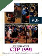 CIP Informe Anual 1991