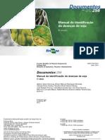 Manual de Identificação de Doenças Da Soja