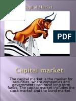 18273198 Capital Market