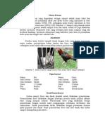 Pembahasan Diagnostik Ayam