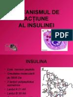 Mecanismul de Actiune a insulinei