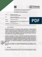 INFORME -2013-MTPE.2.14.1