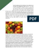 Colorimetria en alimentos