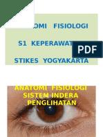 Anatomi Fisiologi Sistem Indera Penglihatan Stikes Yogyakarta