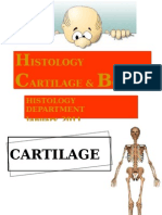 DMS2 - K3 - Histology of Cartilage & Bone