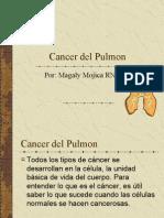 3.2cancerpulmo.pdf
