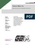 gbi 2.0 narrative.pdf