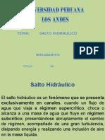 Expo Salto Hidraulico
