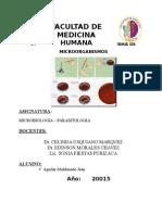 practica 4 METODOS DE SIEMBRA.docx
