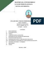 141893288-SYLLABUS-MORFOFISIOLOGIA-2012-10.pdf