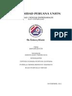 TRABAJO DE INVESTIGACION Bancarización.doc