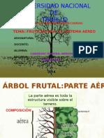 EL SISTEMA AEREO.pptx