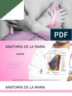 Prevención, Tamizaje y Referencia de Casos Sospechosos de Ca Mama