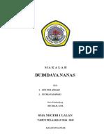 Budidaya Nanas