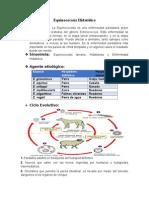 Equinococosis Hidatídica