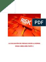 La Evaluacion Del Riesgo Segun La Norma OHSAS 18002.2008 Parte 1