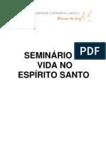Seminário de Vida no Espírito Santo SVE-COMPLETO