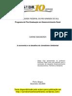 Carine Massierer - A Economia e Os Desafios Do Jornalismo Ambiental