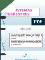 Ecosistemas Terrestres y Biogeografia