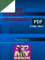 Anatomi Otak Neurotransmitter