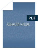 Asignación Familiar y Gratificaciones.pdf