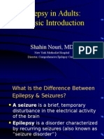 Epilepsy in Adults a Basic Introduction