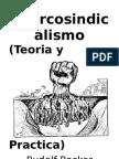 Anarcosindicalismo (teoria y practica)