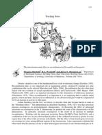 mutasi dorsophila