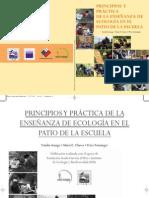 Principios y práctica de la EEPE - FINAL