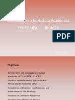 PPT EA - Estructura Académica V1