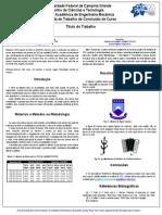 Poster Modelo Para TCC Da UAEM
