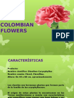 Colombian Flowers Final