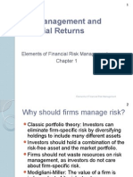Risk Managment & Financial Returns