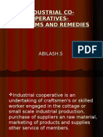 Industrial Cooperativesproblems and Remedies
