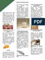Vitamina B12 en carnes.pdf