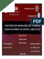 Caracterizacion Mineralogica.pdf