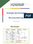 Biocombustibili liquidi
