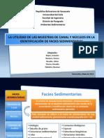 La Utilidad de Las Muestras de Canal y Núcleos en La Identificación de Facies Sedimentarias [PRESENTACIÓN]