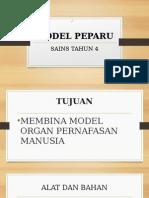 Model Peparu
