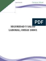 Seguridad y Salud Laboral Ohsas 18001